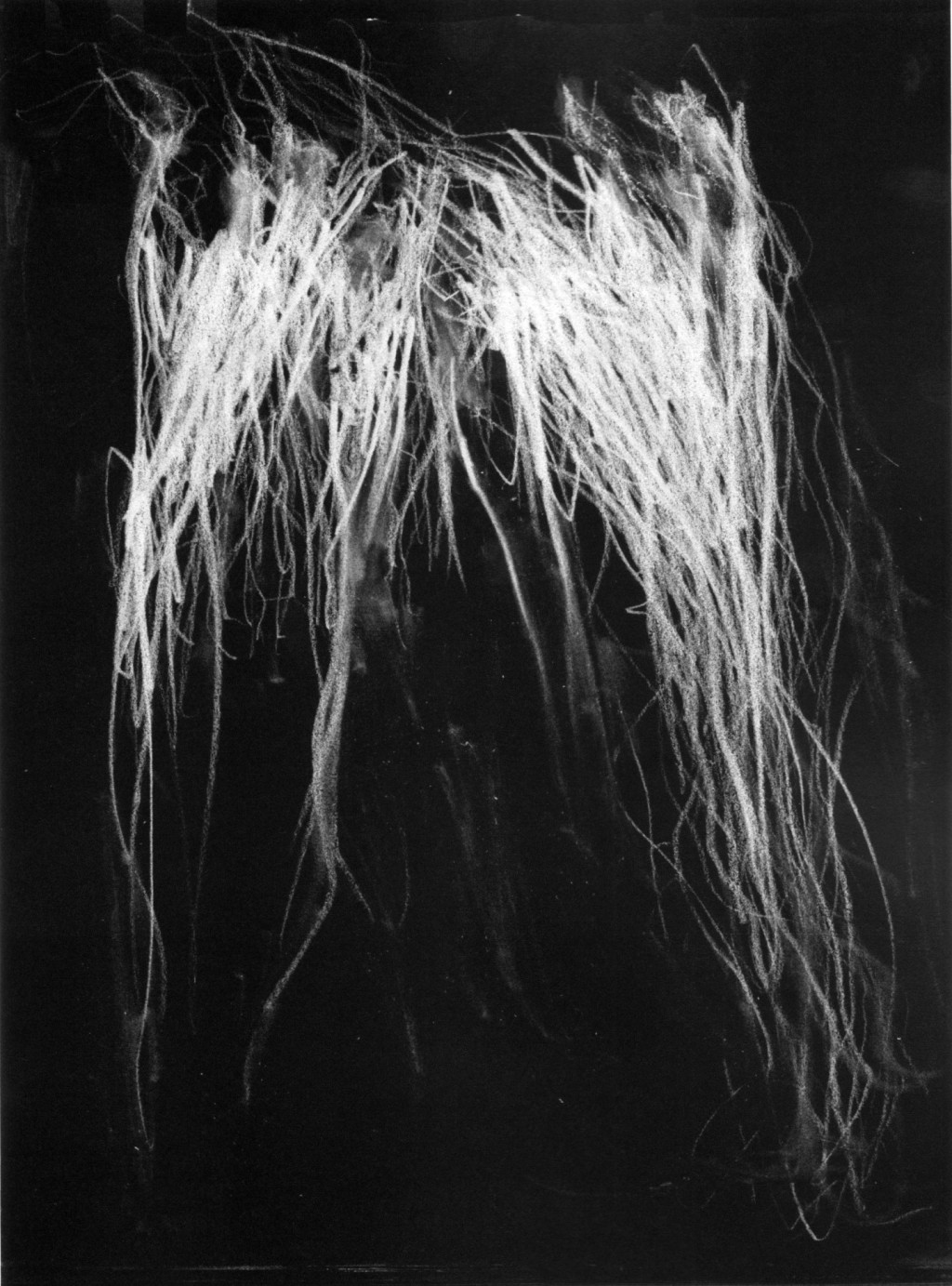 blackmetal-cy-twombly-volume-1-Andrew-McLeod