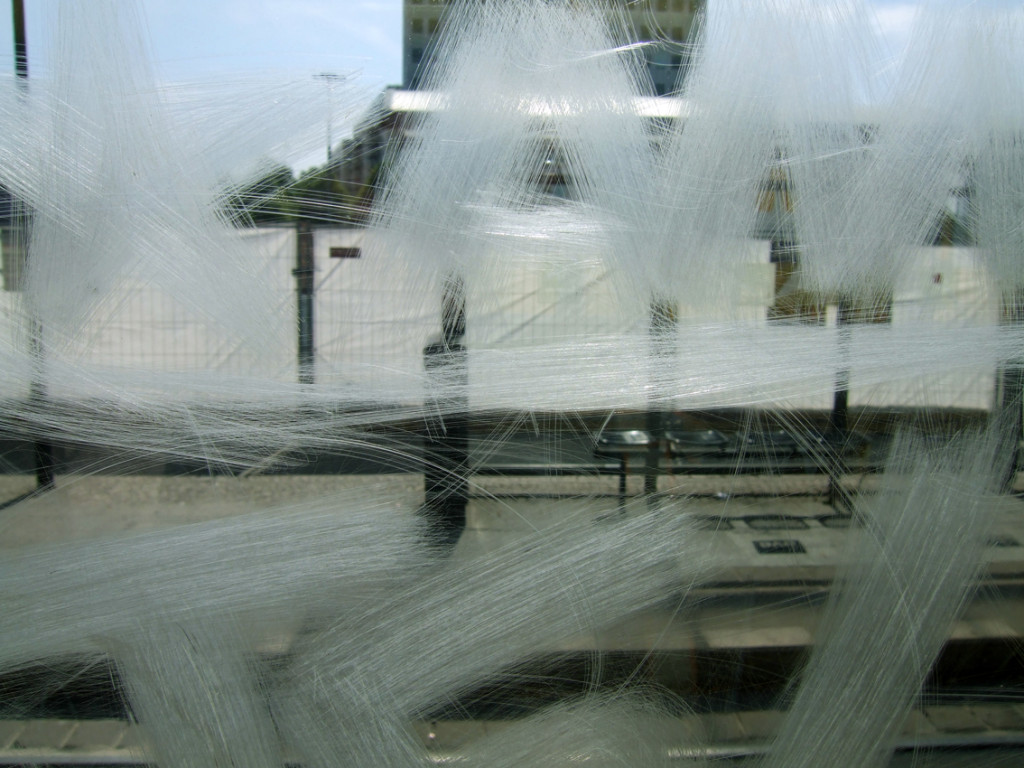 dominique-auerbacher-photo-series-scratches