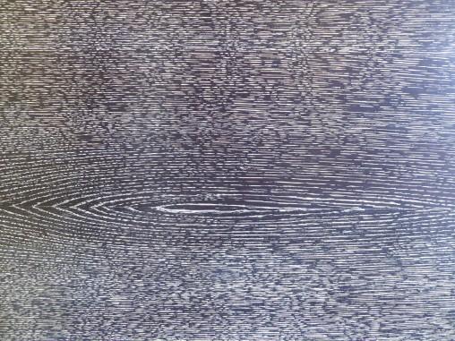 palm-trere-wood-close-up-villa-cavrois